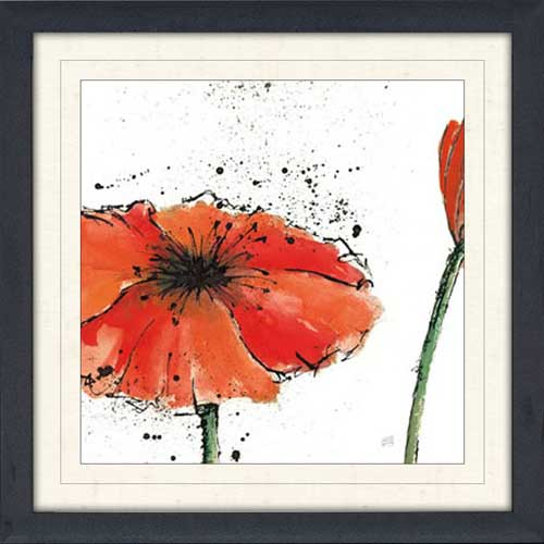 Not a California Poppy on White III